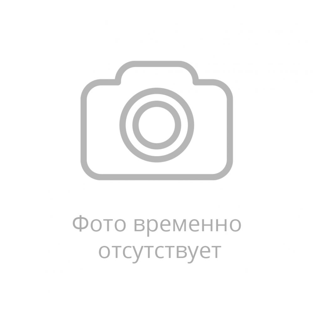 Doronina-E.V..jpg